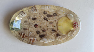 Soap Dish - Natural Seashell Resin Laminated
