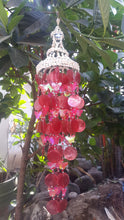 Red Capiz Shells and White Nassa Shells - Garden Decor 25""