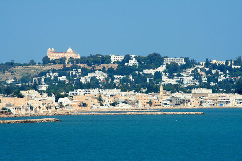 City of Tunis from the sea