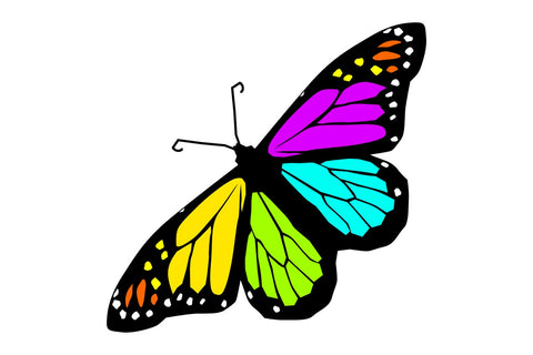 Cute colors  Butterfly