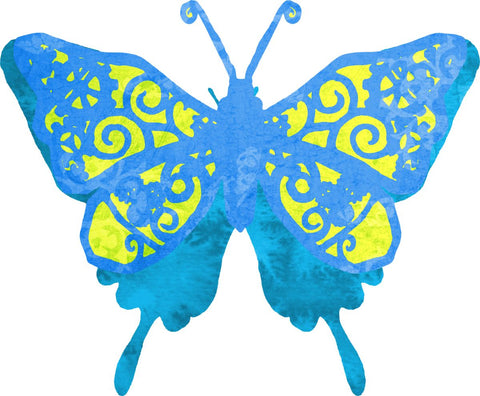 Blue Yellow Butterfly