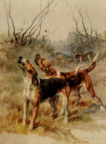 Earl, Maud (1864-1943) - The Power of the Dog 1910 (Foxhounds)