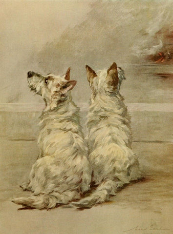 Earl, Maud (1864-1943) - The Power of the Dog 1910 (West Highland White Terrier)