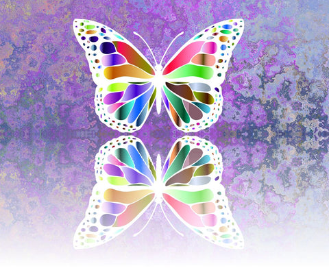 Rainbow Reflect  Butterfly