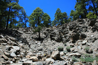 Rocky hillside in the Canary