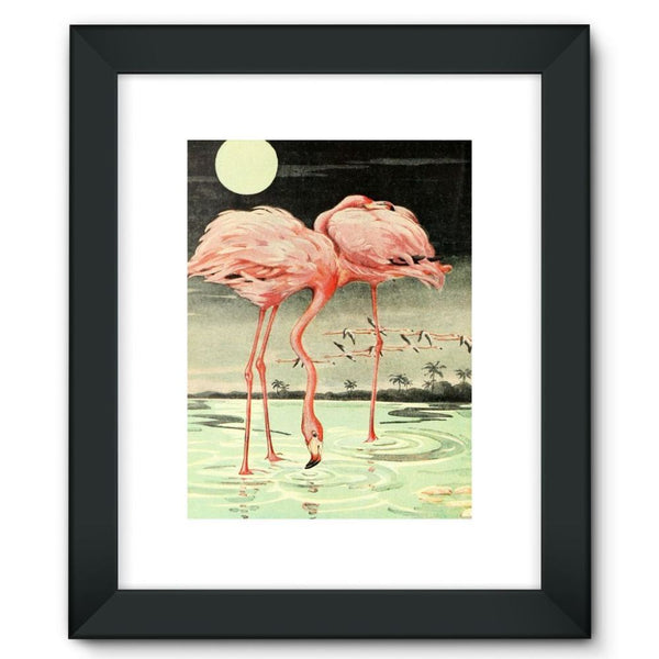 Adventures With Animals 1948 Framed Fine Art Print 12X16 / Black Wall Decor