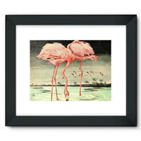 Adventures With Animals 1948 Framed Fine Art Print 16X12 / Black Wall Decor