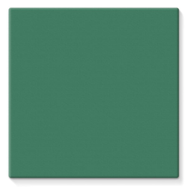 Amazon Green Color Stretched Eco-Canvas 10X10 Wall Decor