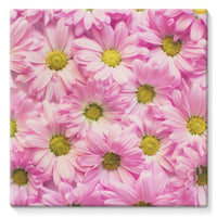 Arrangement Pink Blossoms Stretched Canvas 10X10 Wall Decor