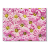 Arrangement Pink Blossoms Stretched Canvas 16X12 Wall Decor