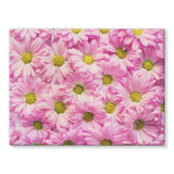Arrangement Pink Blossoms Stretched Canvas 32X24 Wall Decor
