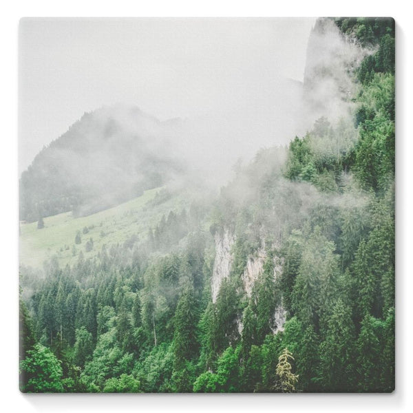 Bavarian Germany Foggy Stretched Canvas 10X10 Wall Decor