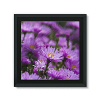 Beautiful Purple Flowers Framed Eco-Canvas 10X10 Wall Decor