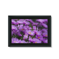 Beautiful Purple Flowers Framed Eco-Canvas 30X20 Wall Decor