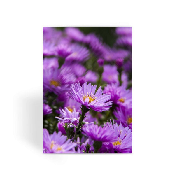 Beautiful Purple Flowers Greeting Card 1 Prints
