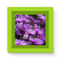 Beautiful Purple Flowers Magnet Frame Green Homeware