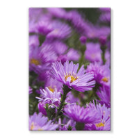 Beautiful Purple Flowers Stretched Canvas 24X36 Wall Decor