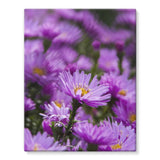 Beautiful Purple Flowers Stretched Eco-Canvas 11X14 Wall Decor