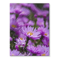 Beautiful Purple Flowers Stretched Eco-Canvas 18X24 Wall Decor