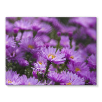 Beautiful Purple Flowers Stretched Eco-Canvas 24X18 Wall Decor