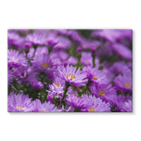 Beautiful Purple Flowers Stretched Eco-Canvas 36X24 Wall Decor