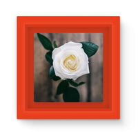Beautiful White Rose Magnet Frame Red Homeware