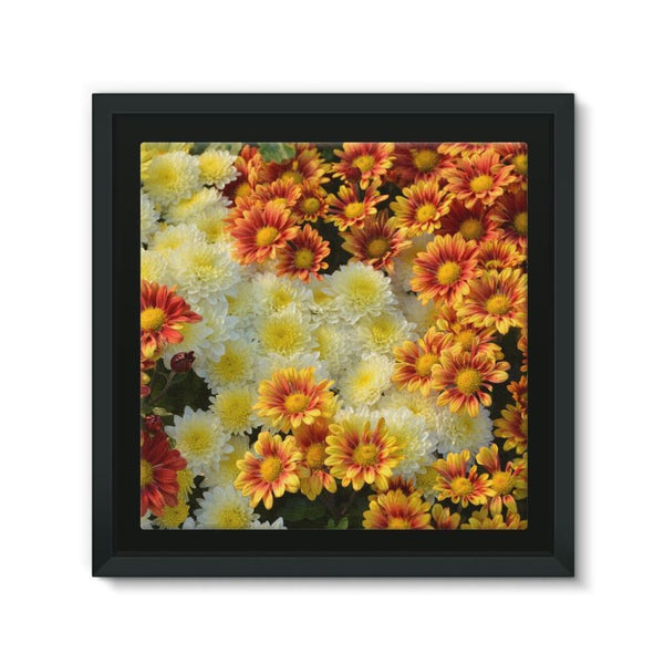 Beautifully Blooming Plants Framed Eco-Canvas 10X10 Wall Decor
