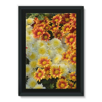 Beautifully Blooming Plants Framed Eco-Canvas 24X36 Wall Decor