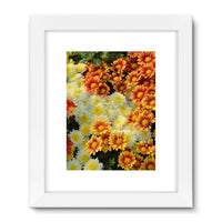 Beautifully Blooming Plants Framed Fine Art Print 18X24 / White Wall Decor