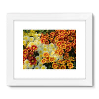 Beautifully Blooming Plants Framed Fine Art Print 24X18 / White Wall Decor