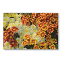 Beautifully Blooming Plants Stretched Canvas 30X20 Wall Decor