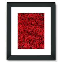 Bed Of Red Roses Framed Fine Art Print 12X16 / Black Wall Decor