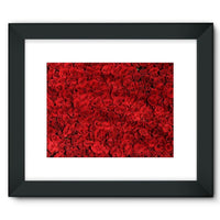 Bed Of Red Roses Framed Fine Art Print 16X12 / Black Wall Decor
