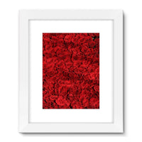 Bed Of Red Roses Framed Fine Art Print 18X24 / White Wall Decor