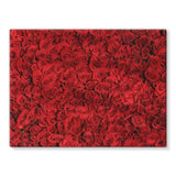 Bed Of Red Roses Stretched Canvas 16X12 Wall Decor