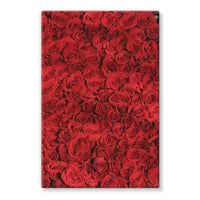 Bed Of Red Roses Stretched Canvas 20X30 Wall Decor