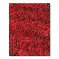 Bed Of Red Roses Stretched Eco-Canvas 11X14 Wall Decor