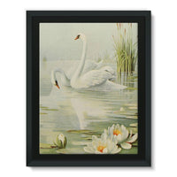 Birds & All Nature 1900 Framed Canvas 12X16 Wall Decor