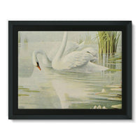 Birds & All Nature 1900 Framed Canvas 16X12 Wall Decor