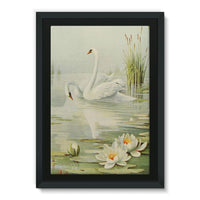 Birds & All Nature 1900 Framed Canvas 24X36 Wall Decor