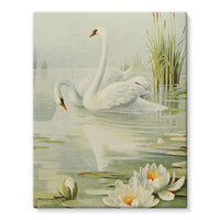 Birds & All Nature 1900 Stretched Eco-Canvas 11X14 Wall Decor