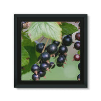 Blackcurrants Pattern Framed Eco-Canvas 10X10 Wall Decor