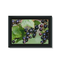 Blackcurrants Pattern Framed Eco-Canvas 36X24 Wall Decor