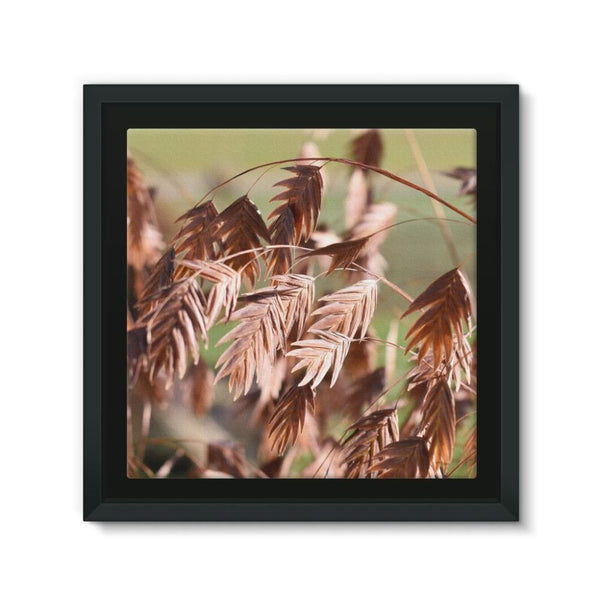Brown (Dried) Plants Outdoor Framed Canvas 12X12 Wall Decor