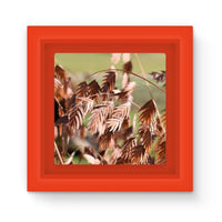 Brown (Dried) Plants Outdoor Magnet Frame Red Homeware