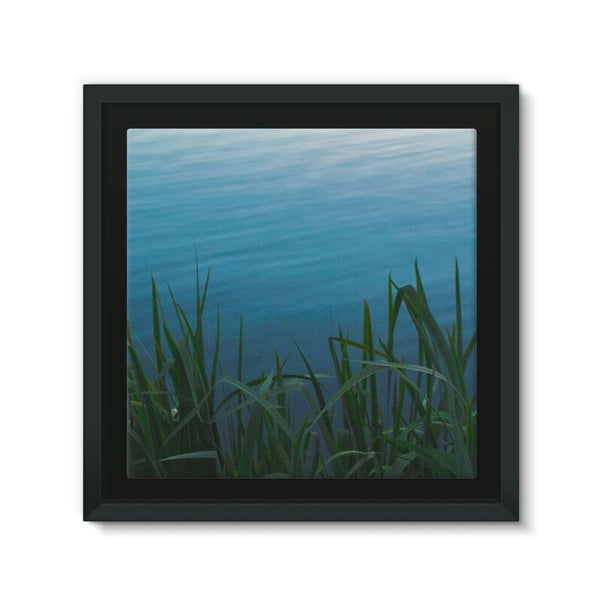 Bushes Near The Water Framed Canvas 12X12 Wall Decor