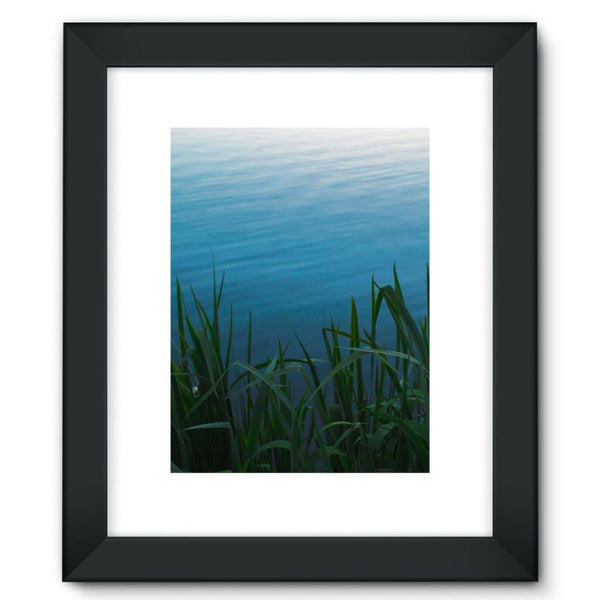 Bushes Near The Water Framed Fine Art Print 12X16 / Black Wall Decor