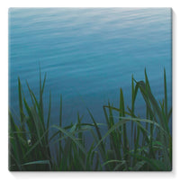 Bushes Near The Water Stretched Canvas 14X14 Wall Decor