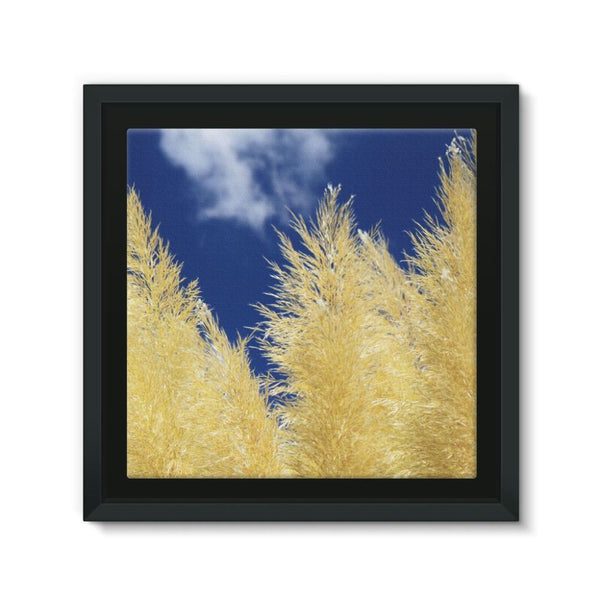Bushes With Sky Background Framed Canvas 12X12 Wall Decor