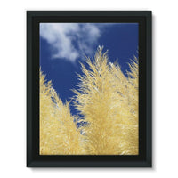 Bushes With Sky Background Framed Canvas 12X16 Wall Decor
